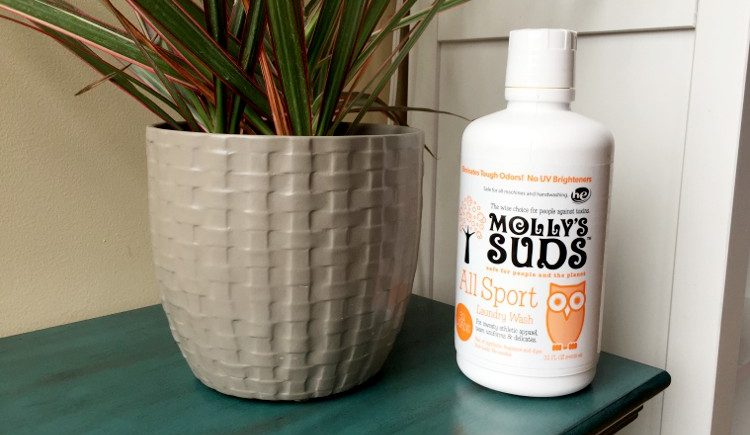 Mollys Suds All Sport Review